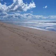 invest in moore park beach